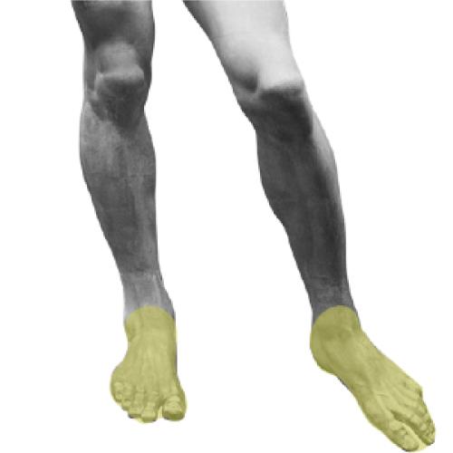 足の甲と指の脱毛